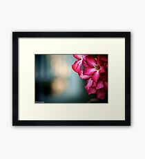 Happiness is...sometime waiting someone...Got 3 Featured Work Framed Print