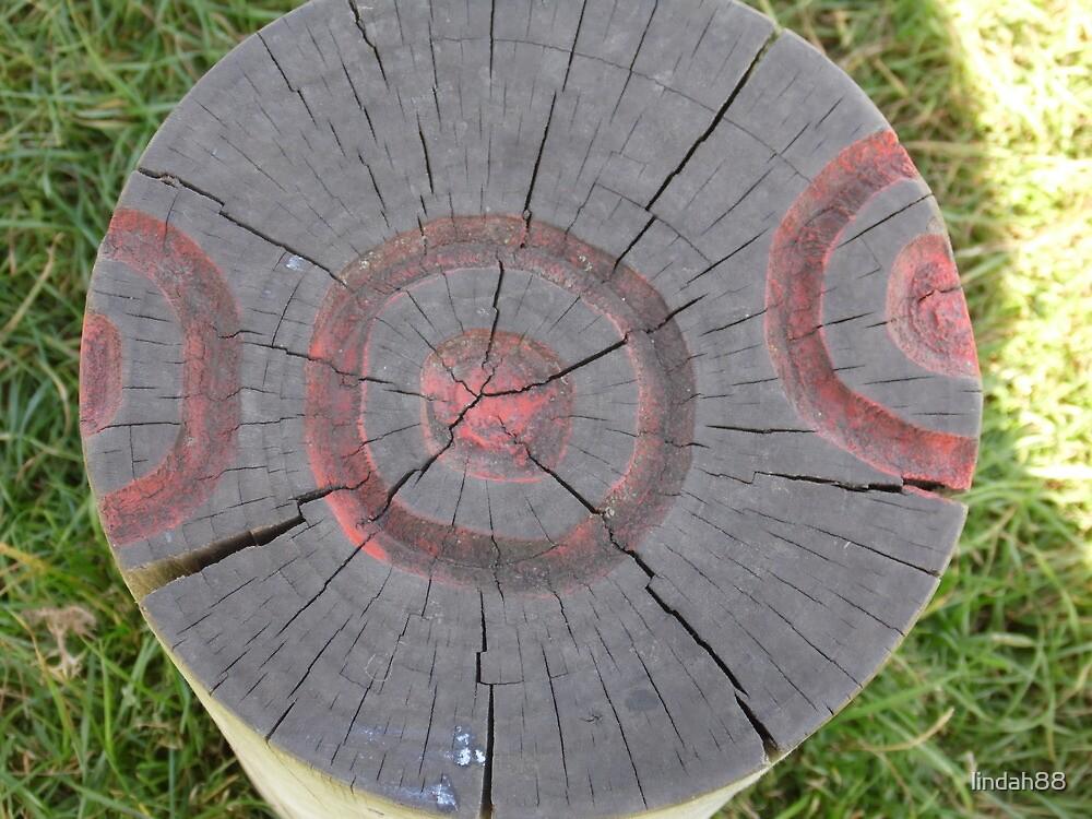 Tree Trunk  by lindah88