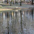 Winter Reflections by KUJO-Photo