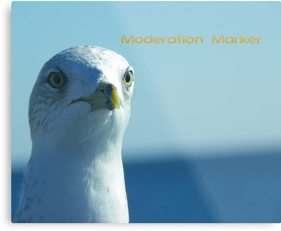 Moderation Banner by MaryinMaine
