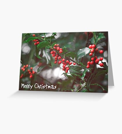 Christmas Berries I Greeting Card