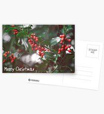 Christmas Berries I Postcards