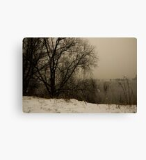 winter scene III Canvas Print