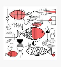 Mid-Century Fish Salmon Pink Photographic Print