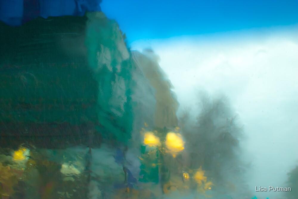 Winter Rain II by Lisa Putman