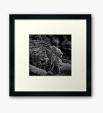 Leprechauns Lair Framed Print