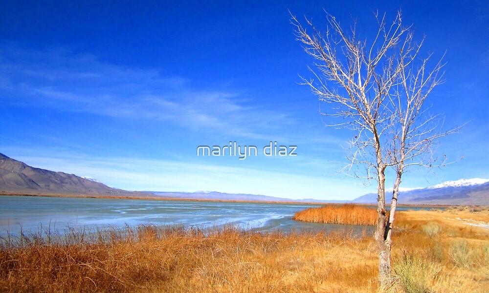 Alone by marilyn diaz