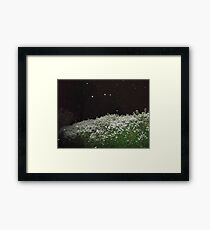 A touch of snow... Framed Print