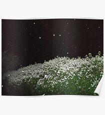 A touch of snow... Poster