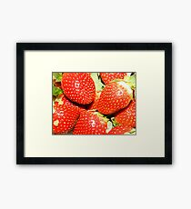 Strawberry backgrounds. Framed Print