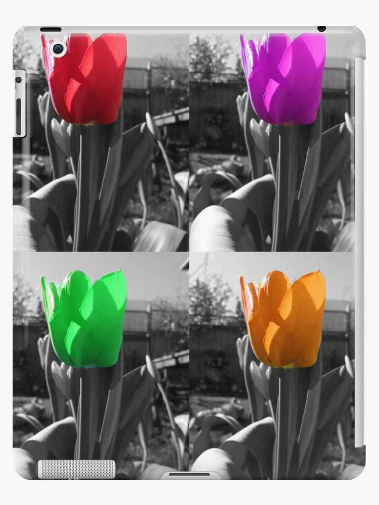 multi-coloured tulips by bloodorange