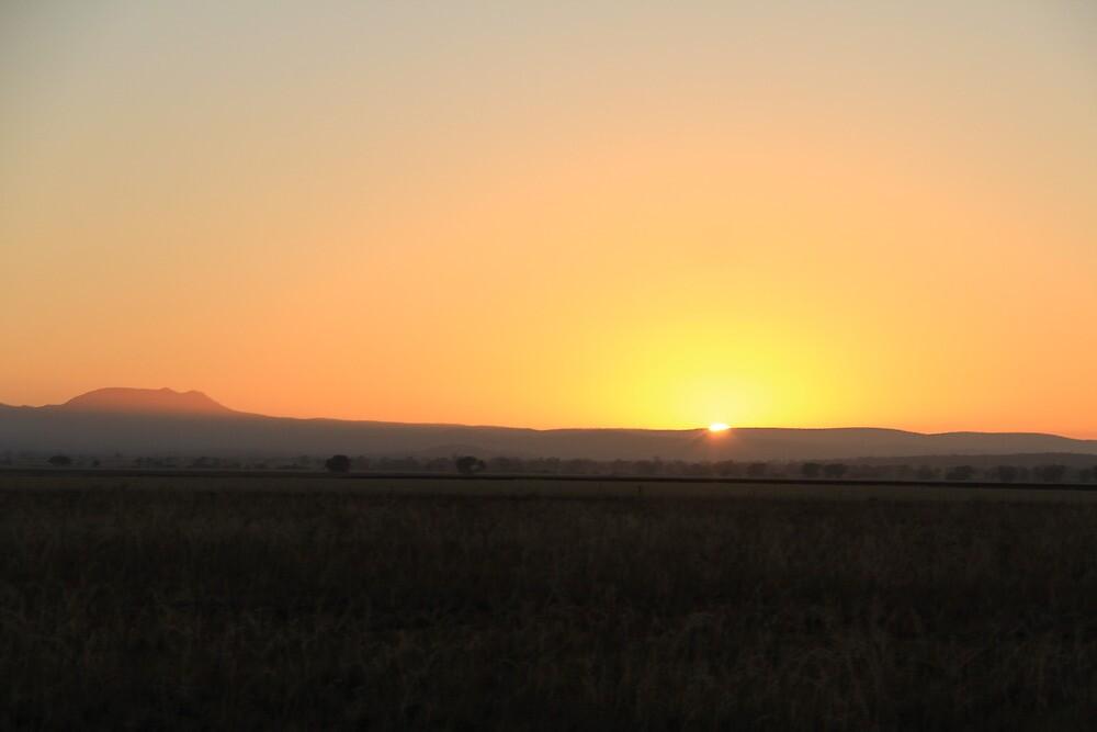 Morning Sun by Crystal-gai  Chiplin
