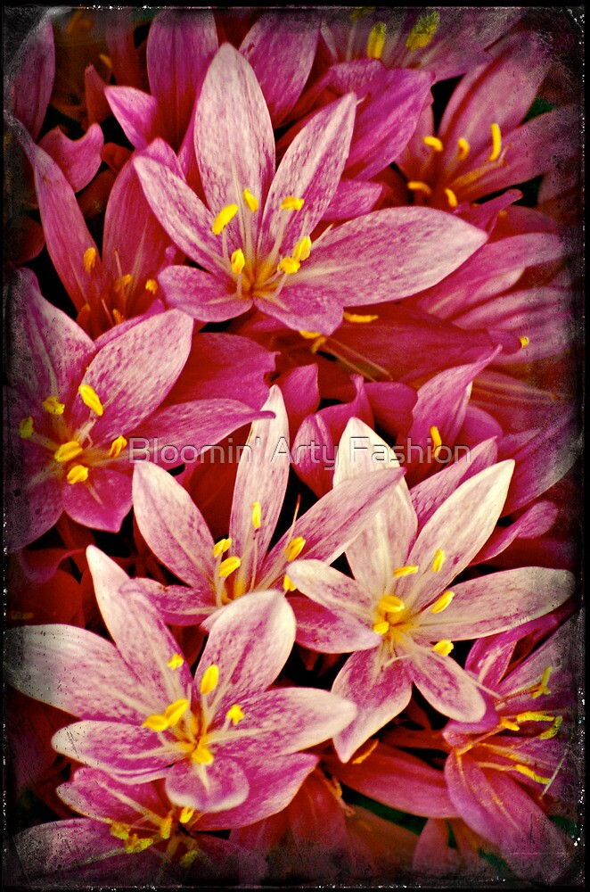 Pink Crocus Flower by Bloomin' Arty Fashion