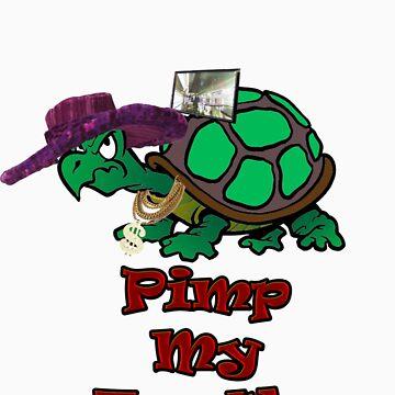 Pimp My Turtle. by elliot81