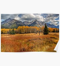 Golden Colors of Fall Poster