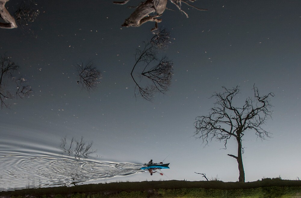 Into the night sky? by seyuk