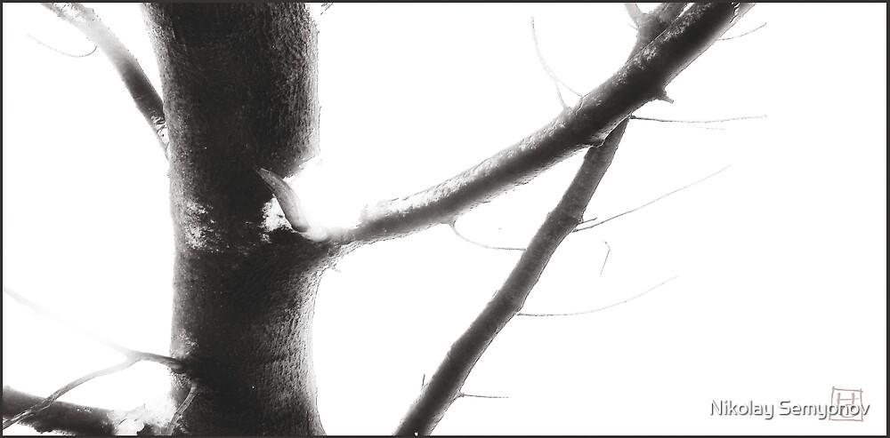 thawing by Nikolay Semyonov
