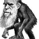 Darwin as a monkey by PeterAndrew
