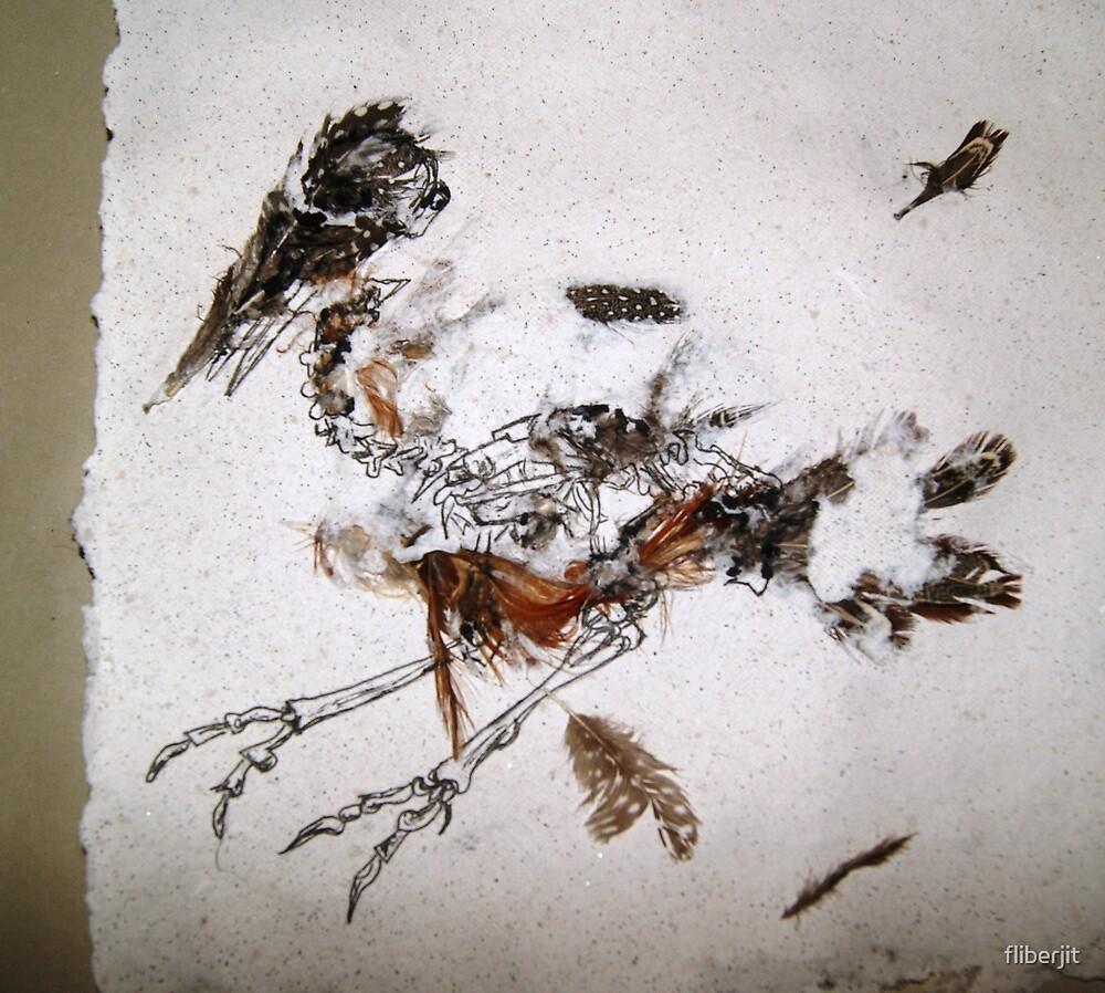 Stephens Island Wren by fliberjit