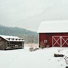 A different view of the barn by Penny Rinker
