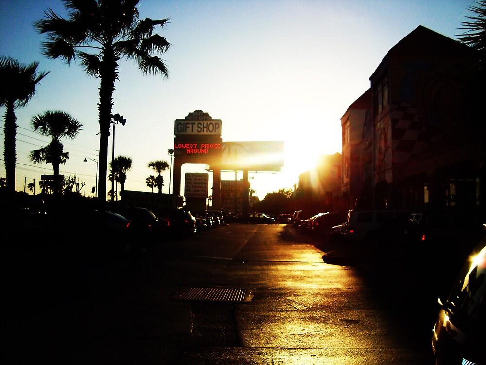 Florida, The Sunshine State by MitchWaite