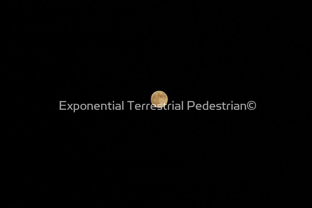 Satellite by Exponential Terrestrial Pedestrian©