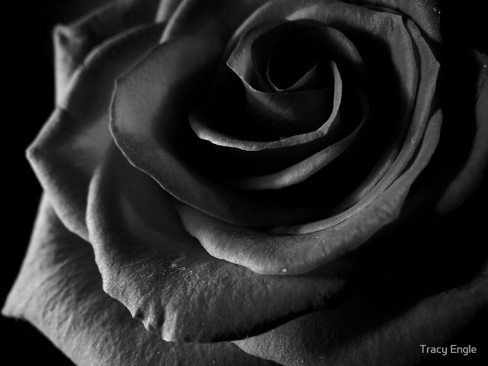 Dark Desire by Tracy Engle