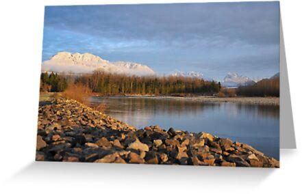 Skykomish River, Washington State by jcimagery