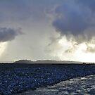 cook river sunrays by rina sjardin-thompson