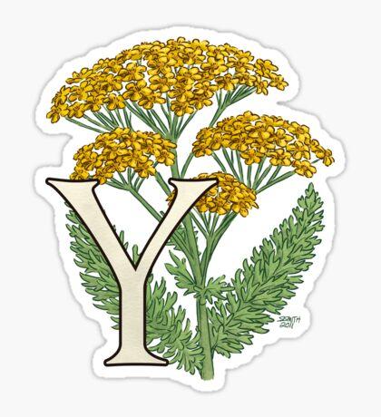 Y is for Yarrow floating Sticker