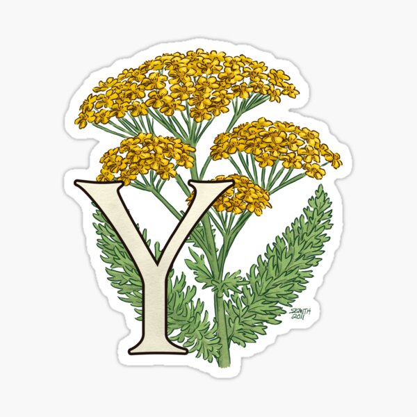 Y is for Yarrow floating Sticker