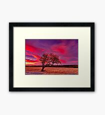 """Evening Solitude"" Framed Print"