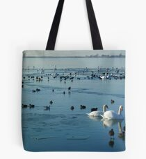 The Conquest of Water Tote Bag