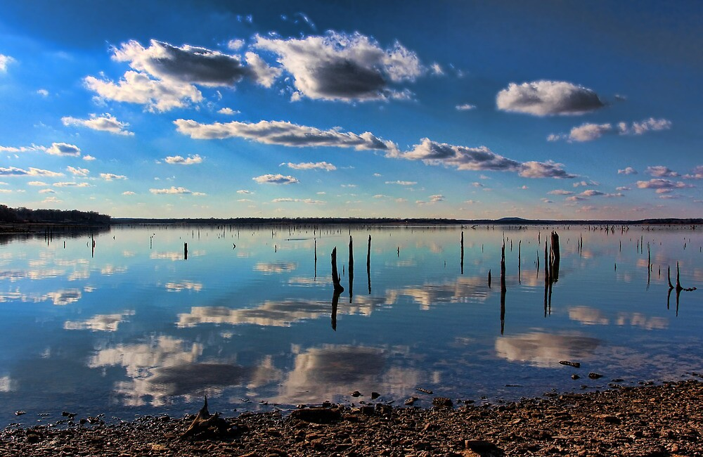 Reflections Galore by Carolyn  Fletcher