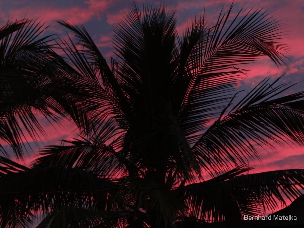 Sunset In PV - Puesta Del Sol En Puerto Vallarta by Bernhard Matejka
