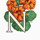 N is for Nasturtium - full image by Stephanie Smith