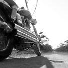 Harley Davidson, the road less traviled. by Neil Mouat