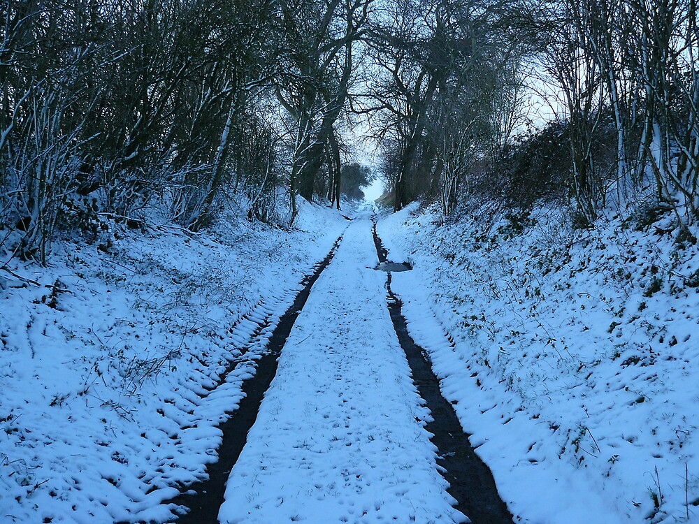 Winterr snow old trolley path by oldfred