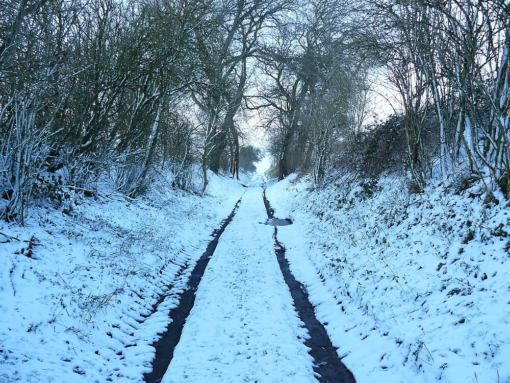 Winterr snow  light old trolley path by oldfred