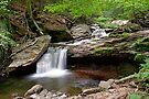 Unsung Glen Leigh Waterfall by Gene Walls