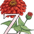 Z is for Zinnia floating by Stephanie Smith