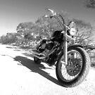 Harley Davidson Dyna Glide by Neil Mouat