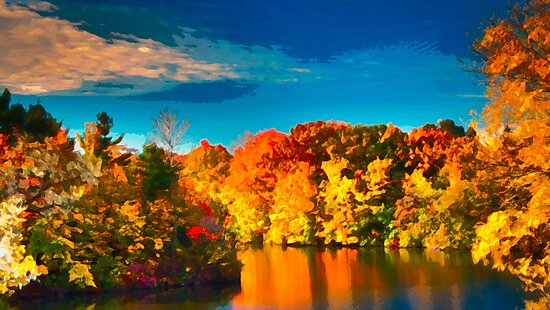 Fall Colours by Stephen Hill