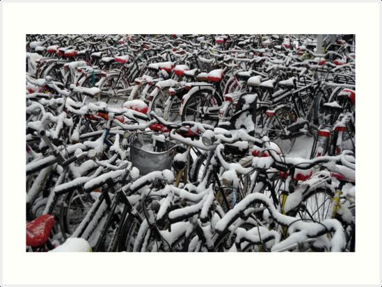 Sea of bicycles by Javimage