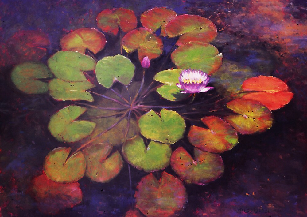 Lilly Pads by Howard Scherer