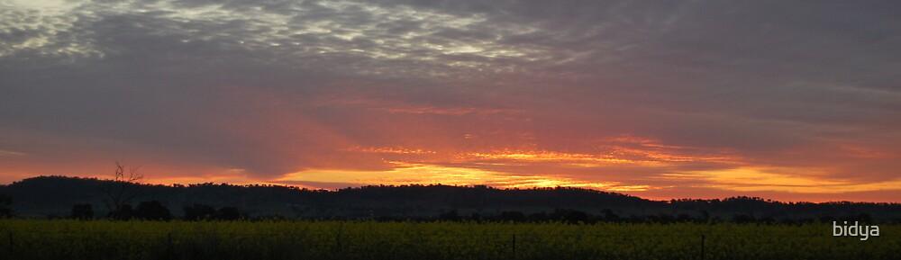 Wiradjuri Sunset Dreaming by bidya