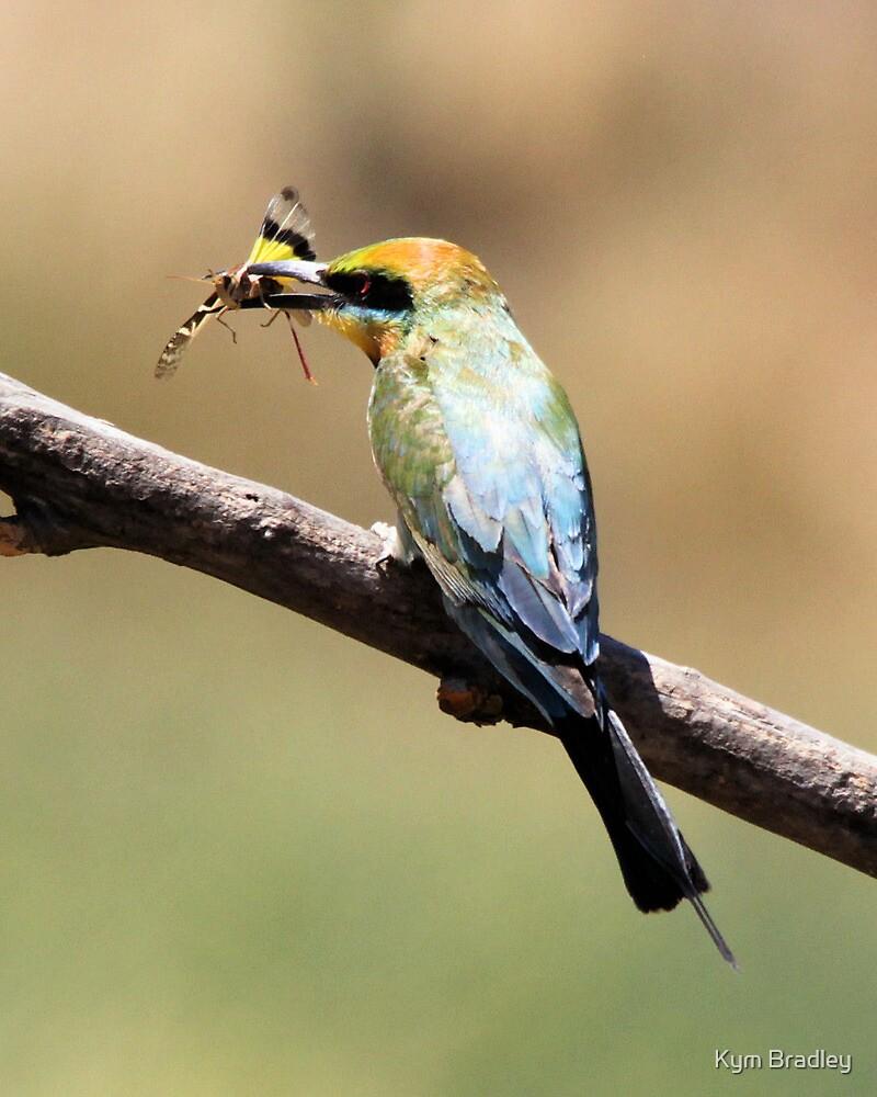 Rainbow Bee Eater Returns with Grasshopper by Kym Bradley