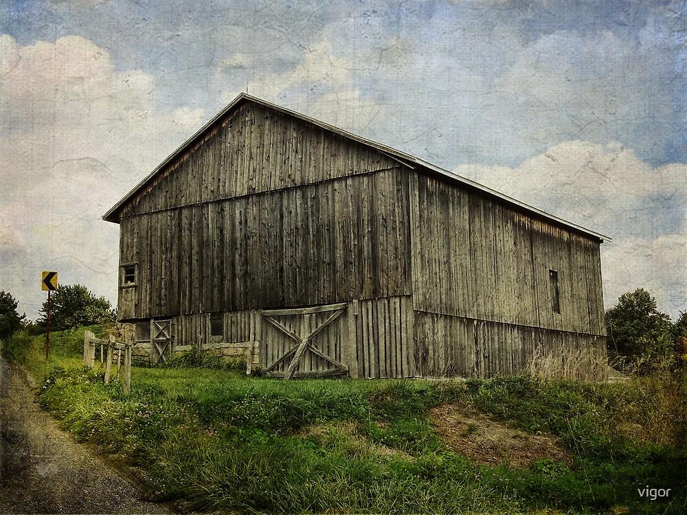 Barn on the Hill by vigor
