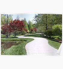Beautiful Path Poster