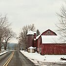 along the country road by Penny Fawver
